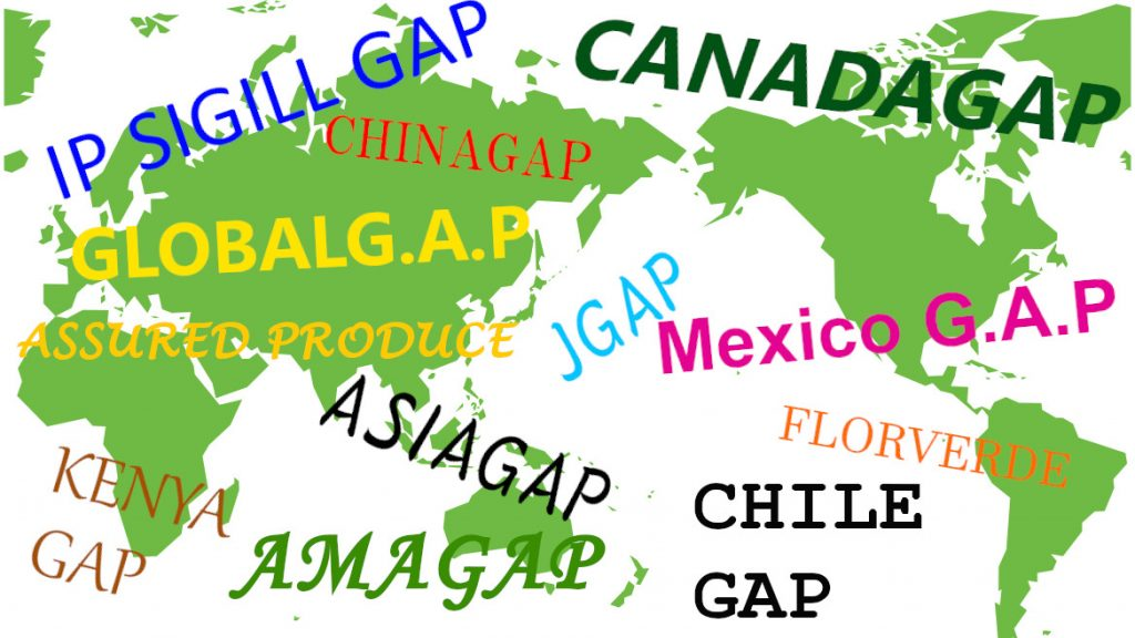 GAP世界地図.jpg